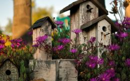 Bird House Garden widescreen WallpaperNew HD Wallpapers 1179