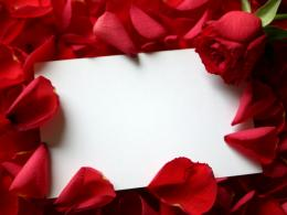 Valentines Day Roses Wallpapers, Greetings Cards For Free Download 647