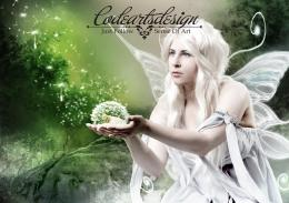 White Fairy Wings Fantasy Abstract hd wallpaper #1574331 219