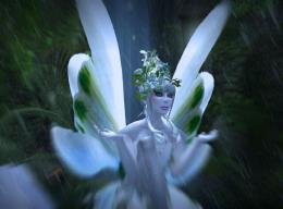 Fairy Wallpaper , here you can see White 3D Beauty Fairy Wallpaper 215