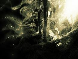 Black and White Fairy Images   wallpaper, wallpaper hd, background 1826