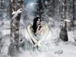 White Snow Fairy Background Wallpapers | Fairy Background Wallpapers 994