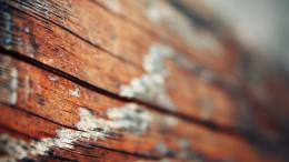 Download Wallpaper 1366x768 surface, wood, light laptop 1366x768 HD 105