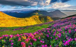 Nature Park Beautiful Scenery Wallpaper free download in high quality 1698