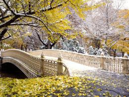 Beautiful Park Wallpaperpic 3PhotosJunction 1352