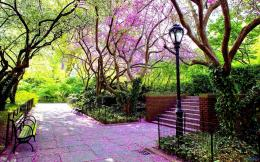 Best Pictures: Beautiful Spring Park1920x1200 Widescreen Wallpapers 280