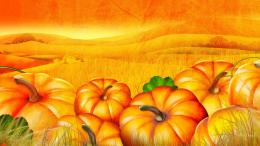 Cartoon Pumpkin Patch Download 1920x1080 the pumpkin patch wallpaper 1312