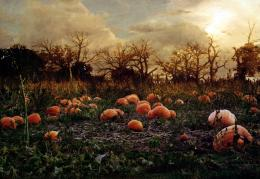 Haunted Pumpkin Patch | Design with Spine 550