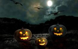 crows flying around three Pumpkin Lanterns in dark field 591