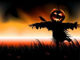 Halloween scarecrow pumpkin field jack bird wallpaper 131