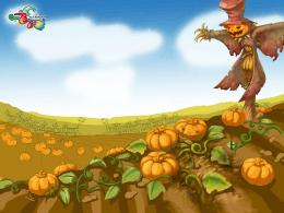 Pumpkin fields patch halloween scarecrow HD Wallpaper 435