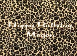 Leopard Print Wallpaper Border | Free Best Hd Wallpapers 612