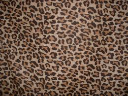 Leopard print Twitter BackgroundsPimp My Profile com 1332