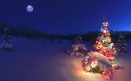 Winter And Merry Christmas Wallpaper HD 1335