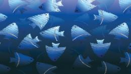Blue fish wallpaperDigital Art wallpapers#20113 1258