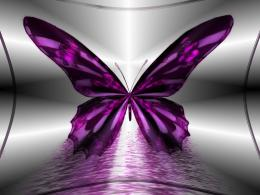 Purple Butterfly Wallpaper 1405
