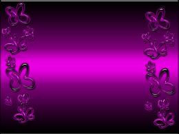 News Butterfly: Purple Butterfly Wallpaper 1945