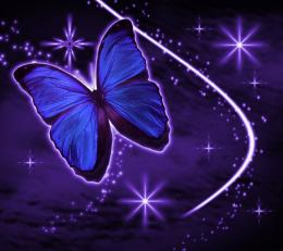 Dark Purple Butterfly Wallpaper This backgroun… 1429