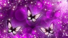 Butterfly Purple Art Wallpaper #11018 Wallpaper | WallDiskPaper 1073