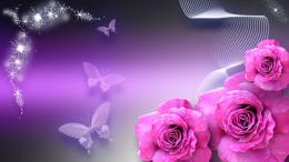 butterfly wallpaper purple pinkWallpaper 668