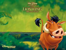 The Lion King images Pumbaa HD wallpaper and background photos 1153