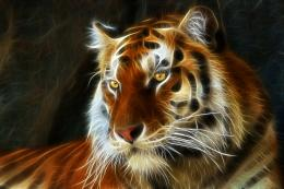 Tiger 3d art fractal wallpaper | 2000x1333 | 163453 | WallpaperUP 1013