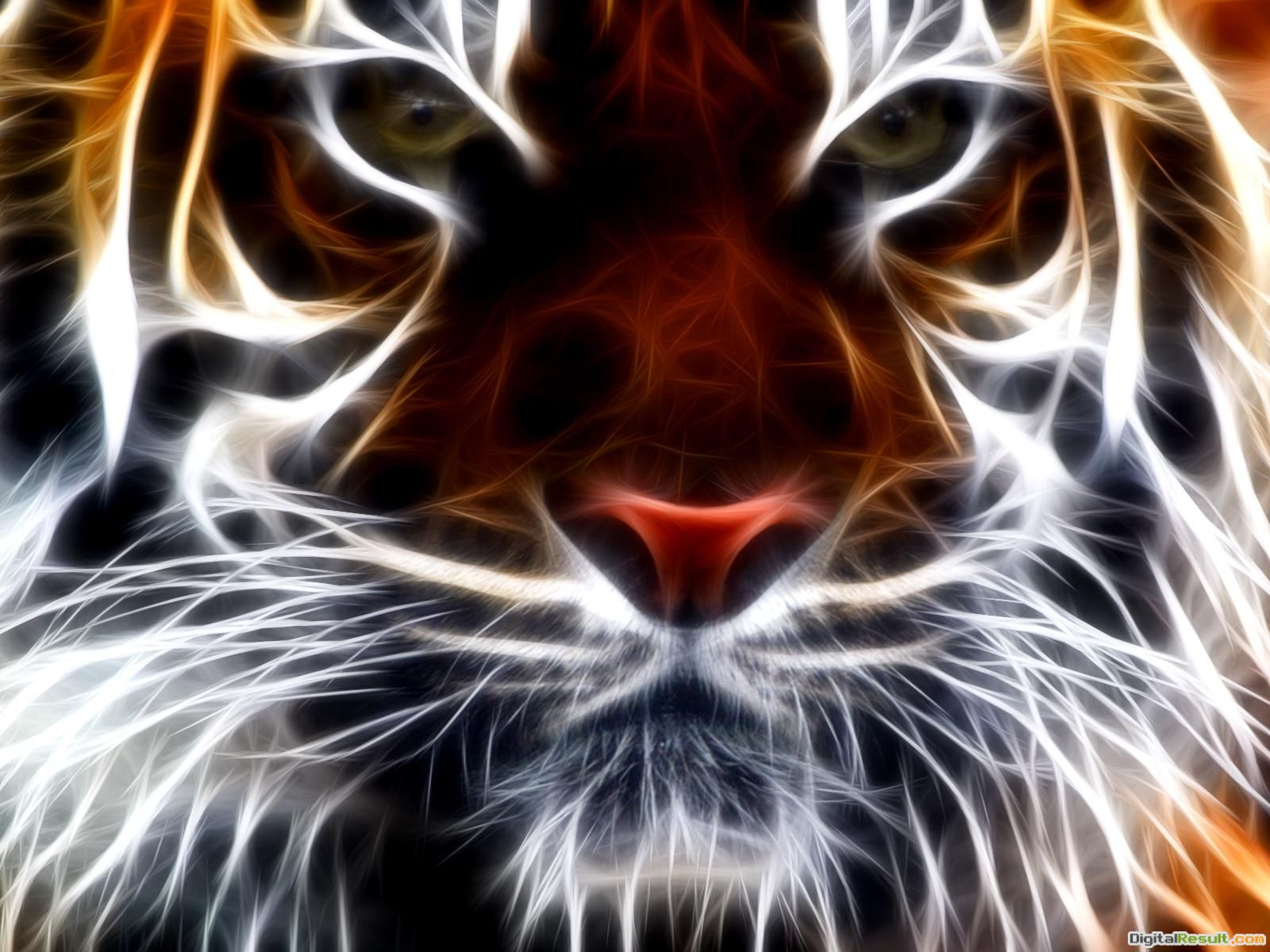 tiger fractal wallpaper 1600x1200 53142a9e028c7 jpg 1893