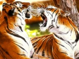 TIGER FRACTALS wallpaperForWallpaper com 461
