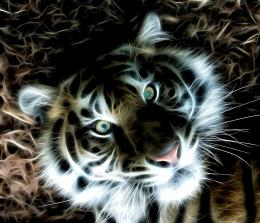Pin Fractal Tiger Wallpaper on Pinterest 1073