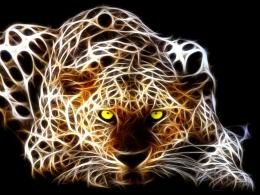 fractal wallpaper3d wallpaper3d cat3d fractal art 1820
