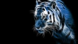 tiger fractal in blue 1279