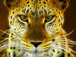 fractal size 1024x768 its amazing photo are nice animals fractal 263