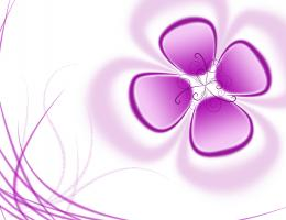 flower hd wallpaper abstract wallpapers latest abstract wallpapers 1054