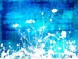 flowers blue white floral abstract textures backgrounds powerpoint jpg 1185