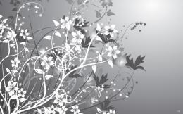 White & Gray Flowers Abstract wallpapers | White & Gray Flowers 706
