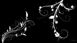 Black And White Floral Abstract Wallpaper Download The Free Black 537