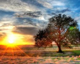 Sunset On A Texas Farm Hdr Hd Wallpaper | Wallpaper List 1462