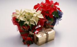 Xmas Gifts 3 Background Wallpaper Wallpaper 422