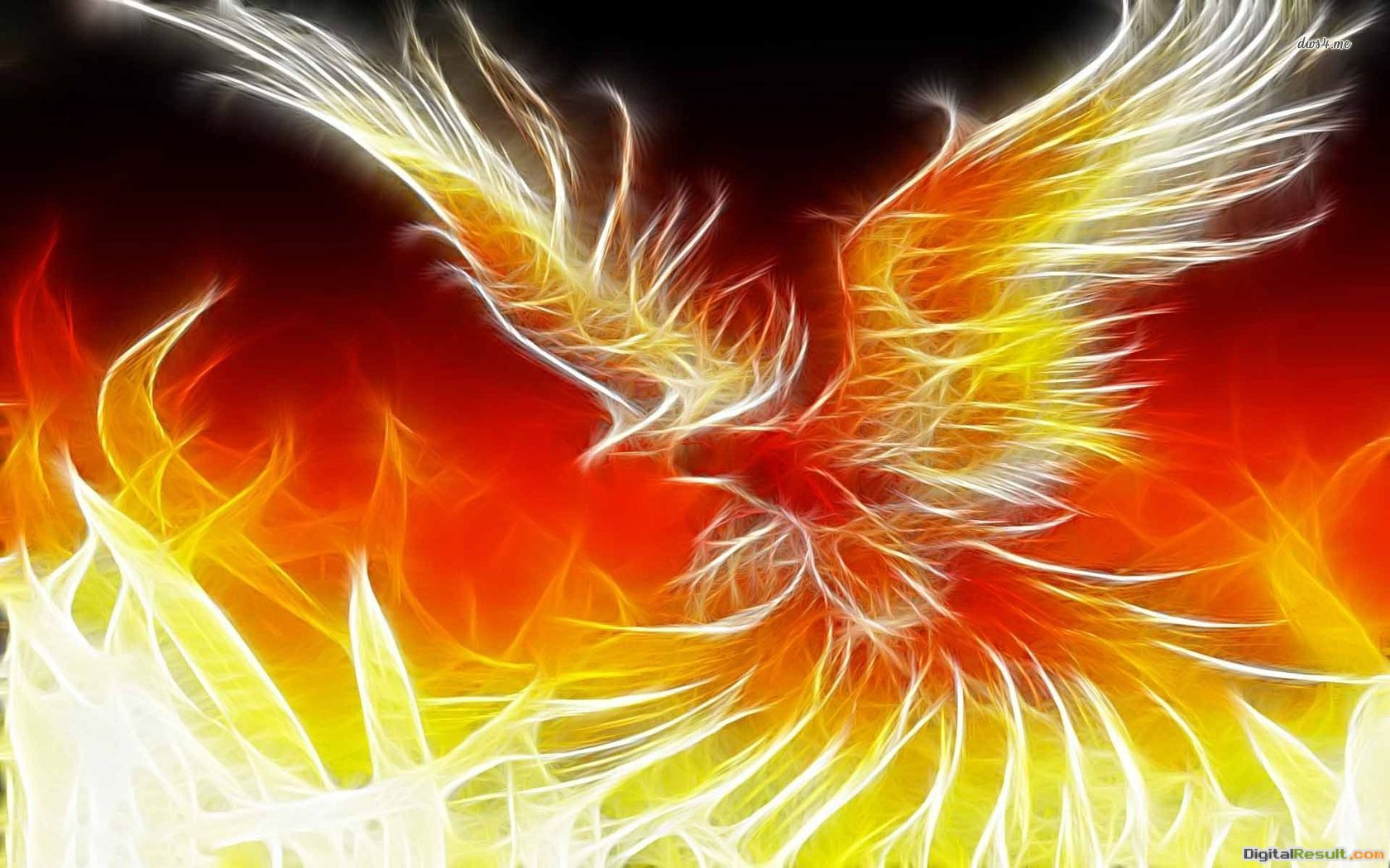 Phoenix Bird 34 Desktop 1453