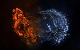 Download Fire Phoenix vs Ice Phoenix Wallpaper | Free Wallpapers 1376