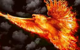 Firebird by welshdragon on DeviantArt 1086