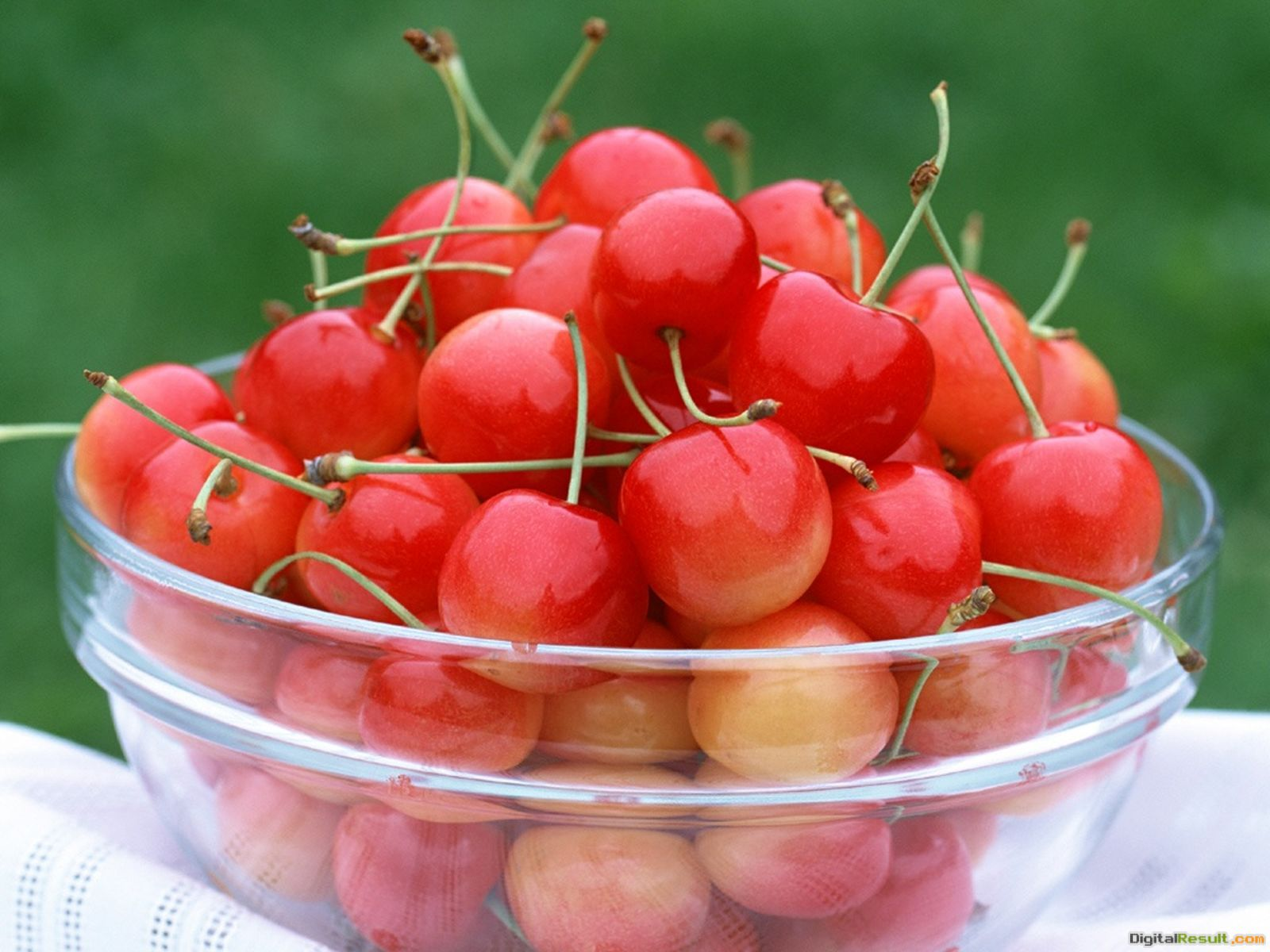 Cherry Fruit Wallpaper HD wallpapersCherry Fruit Wallpaper 1732