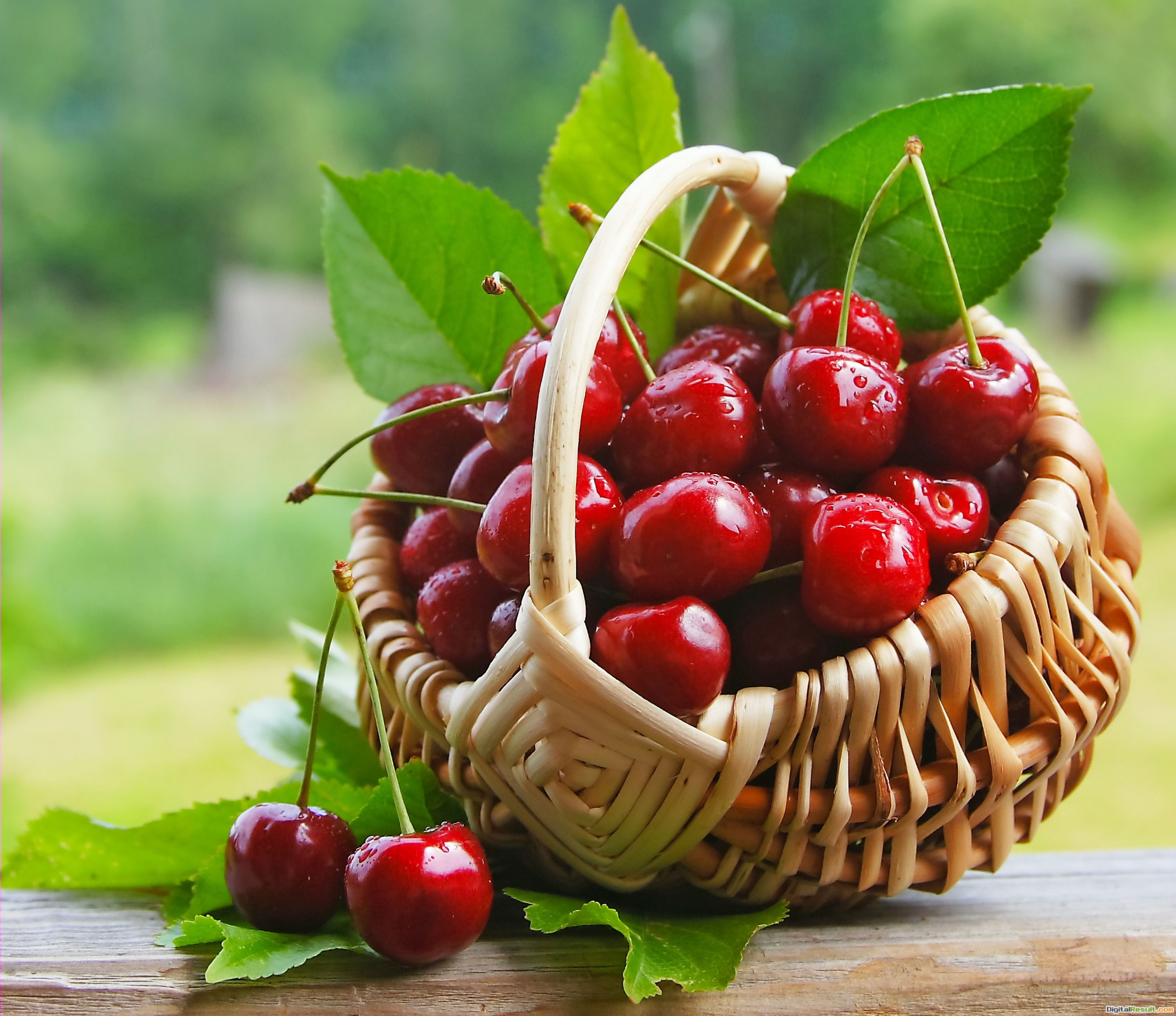 Cherry, berries, sweet, fresh, cherry, berry basket wallpapersphotos 965