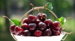 Fresh Cherry Sweet Aromantic Fruit hd wallpaper #1586151 1533