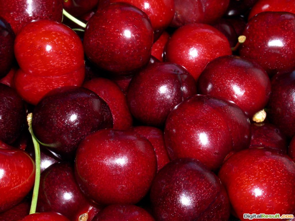 Sweet cherries came to America in 1629 with English colonists, and 449