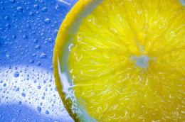 lemon fresh fruit wallpaper high resolution 917