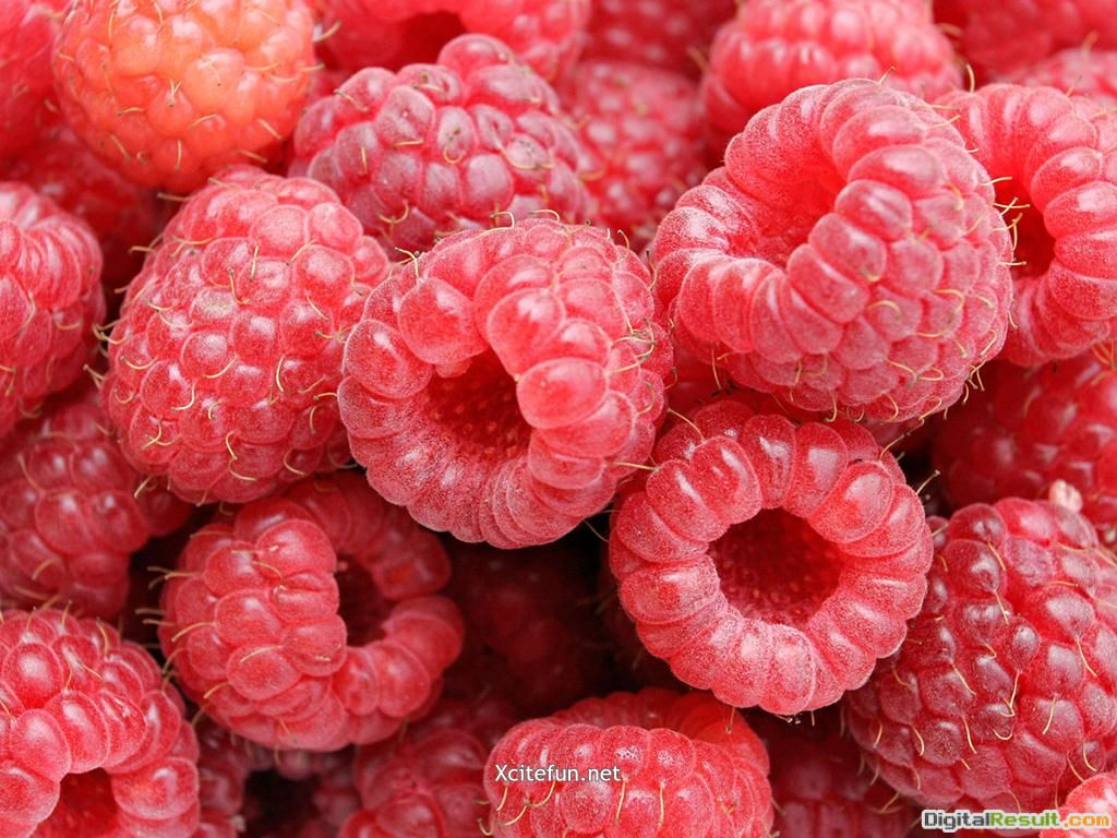 Fresh Fruit Wallpapers : Food Recipes 220