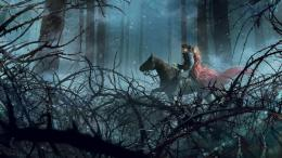 Night Horse Ride Mobile BackgroundDownload Free Mobile Wallpapers 1642
