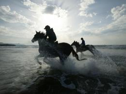 Horse Riding 1600x1200 Desktop Images 1460