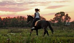 Horse riding, sunset Desktop wallpapers 1024x600 1750